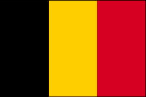 Les grands patrons exilés en Belgique rattrapés par le fisc français